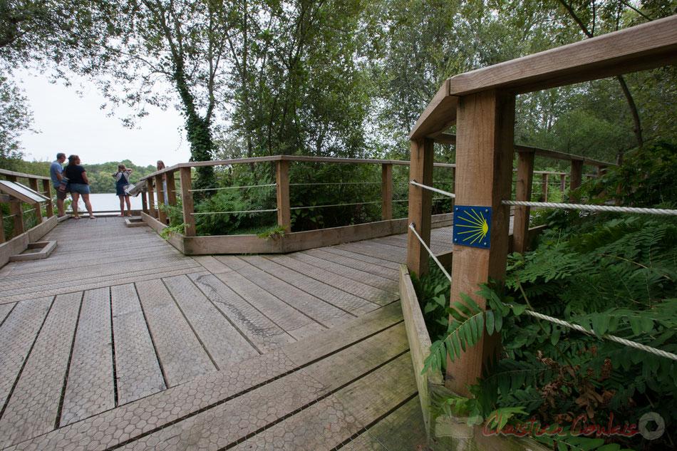 Sur le chemin de Saint-Jacques-de-Compostelle, la Lagune de Contaut, espace naturel sensible de Gironde, Hourtin