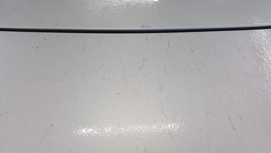 NAロードスターのトランクに鉄粉