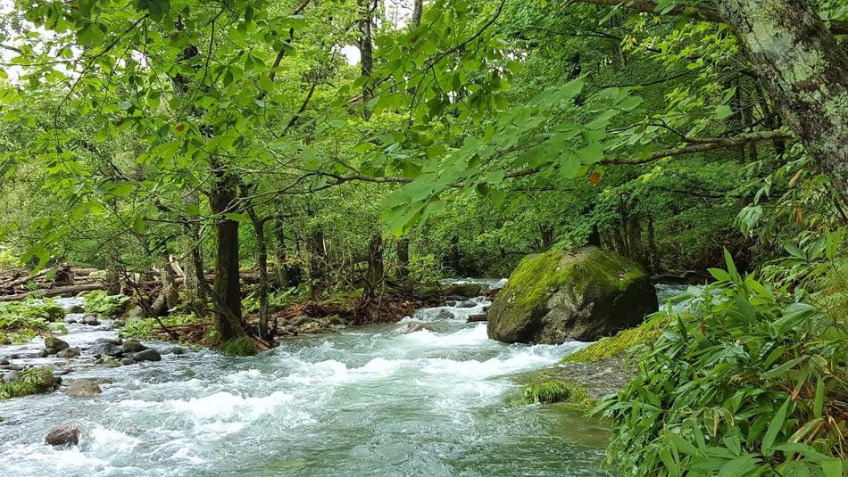 登別の渓流