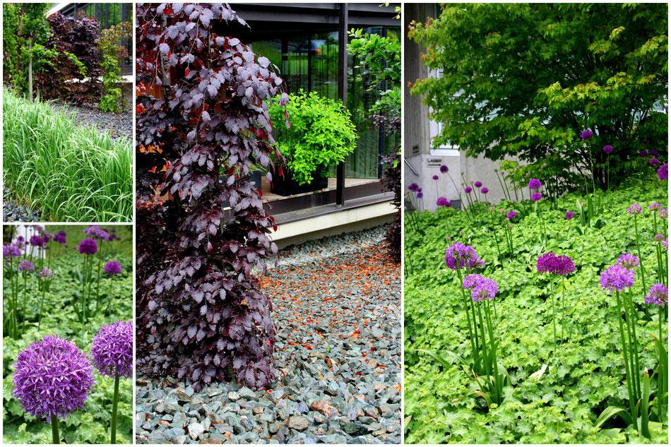 Gartenprojekt Reith im Alpbachtal