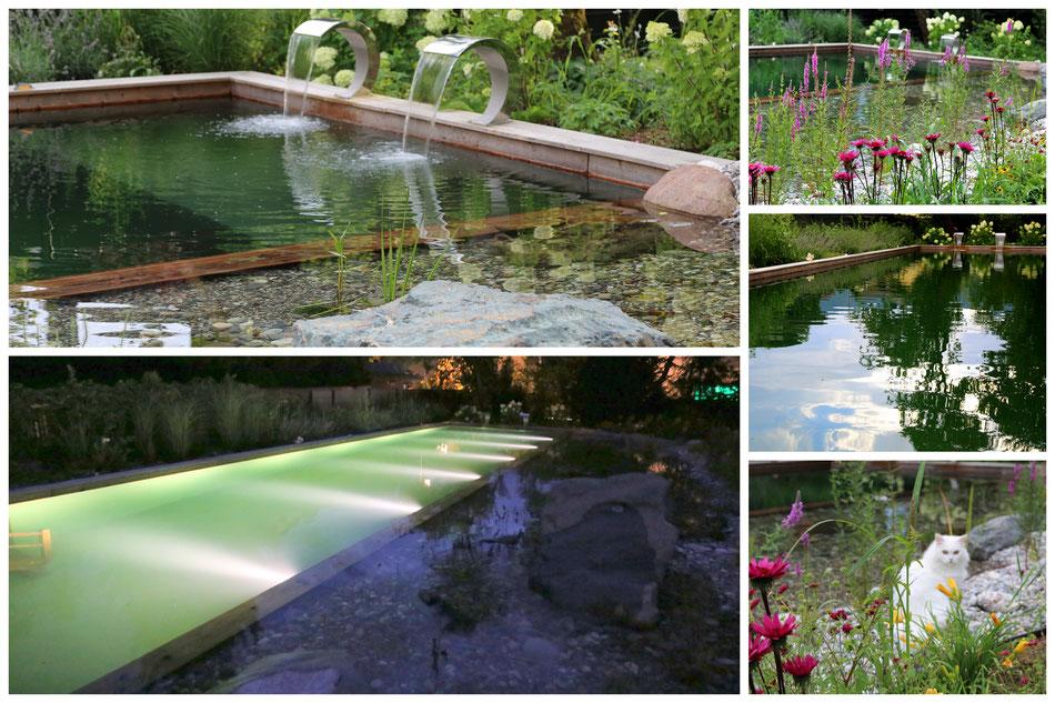 Gartenbeleuchtung Schwimmteich