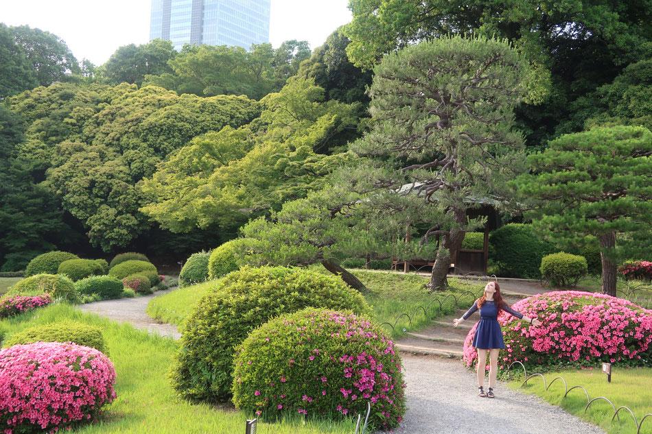 Leben genießen, Japan, wofür lebst du?, Freiheit, Gesundheit, Wohlstand, Lebenslust, Andrea Nicola Mayr