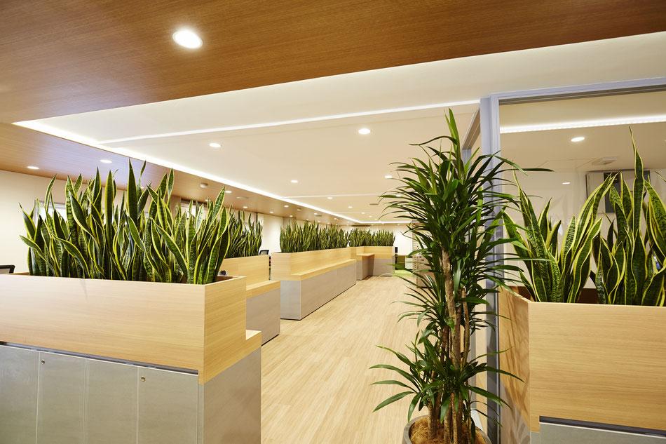 オフィス , オフィスデザイン , リノベーション , コロナ対策オフィス , リノベーションデザイン,  , 店舗デザイン , 内装デザイン , インテリアデザイン