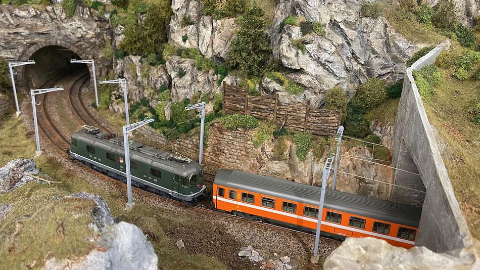 Lötschberg-Simplon Personenzug mit Re 6/6 (Hag) und FS-Personenwagen (Roco)