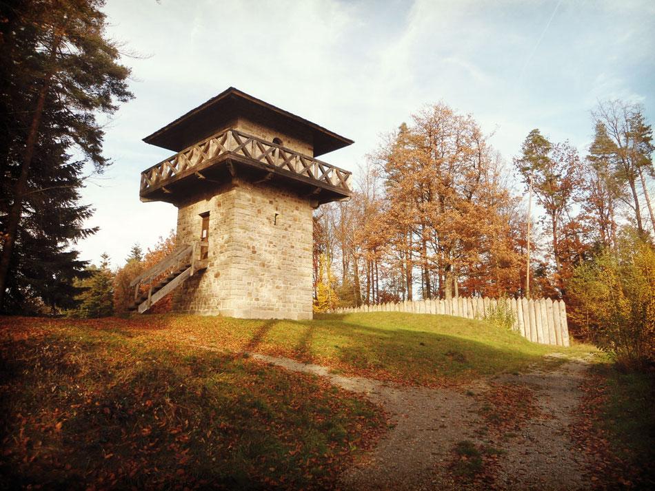 Lohn für die Wanderfreunde:  Der beeindruckende Limes-Wachturm  mit Holzpalisade bei Grab.