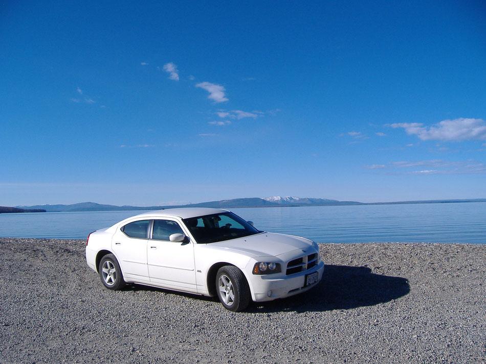 Bild: White Lady Yellowstone National Park