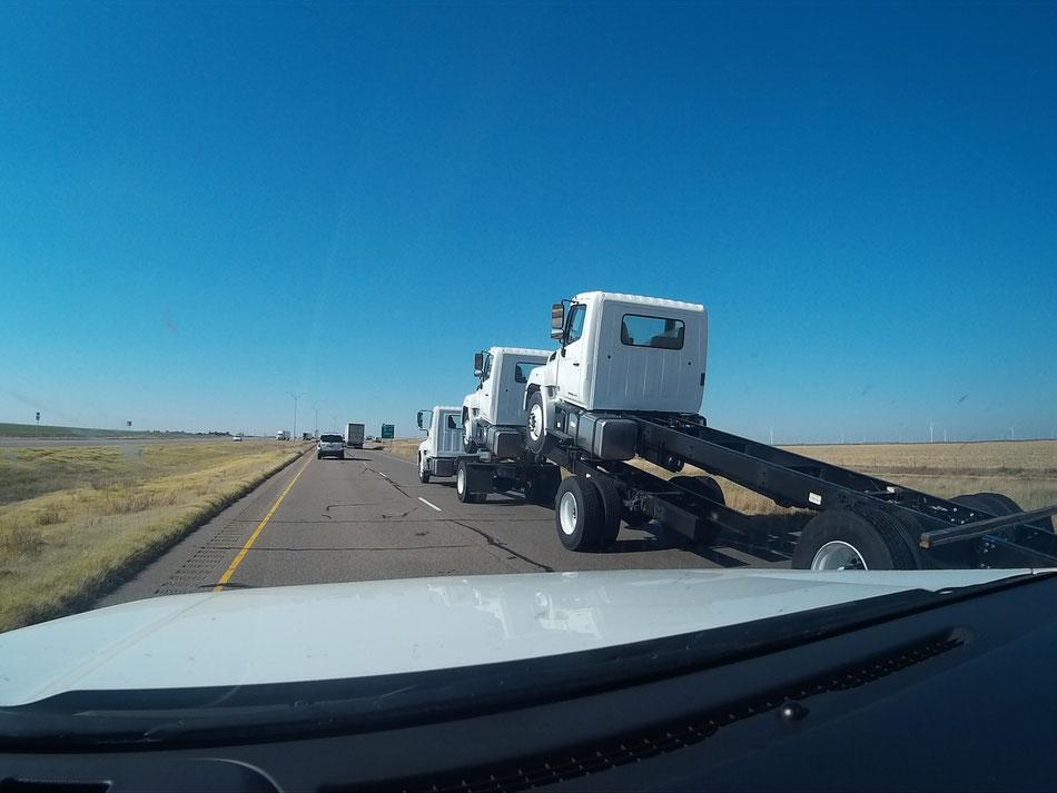 Bild: HDW, Route 66, Mister T. und der Weiße Büffel, Truck, Highway, Amerika, HDW_USA