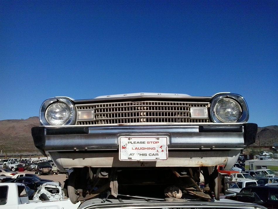 Bild:  Mister T. und der weiße Büffel, Route 66, HDW USA, Road Trip, America