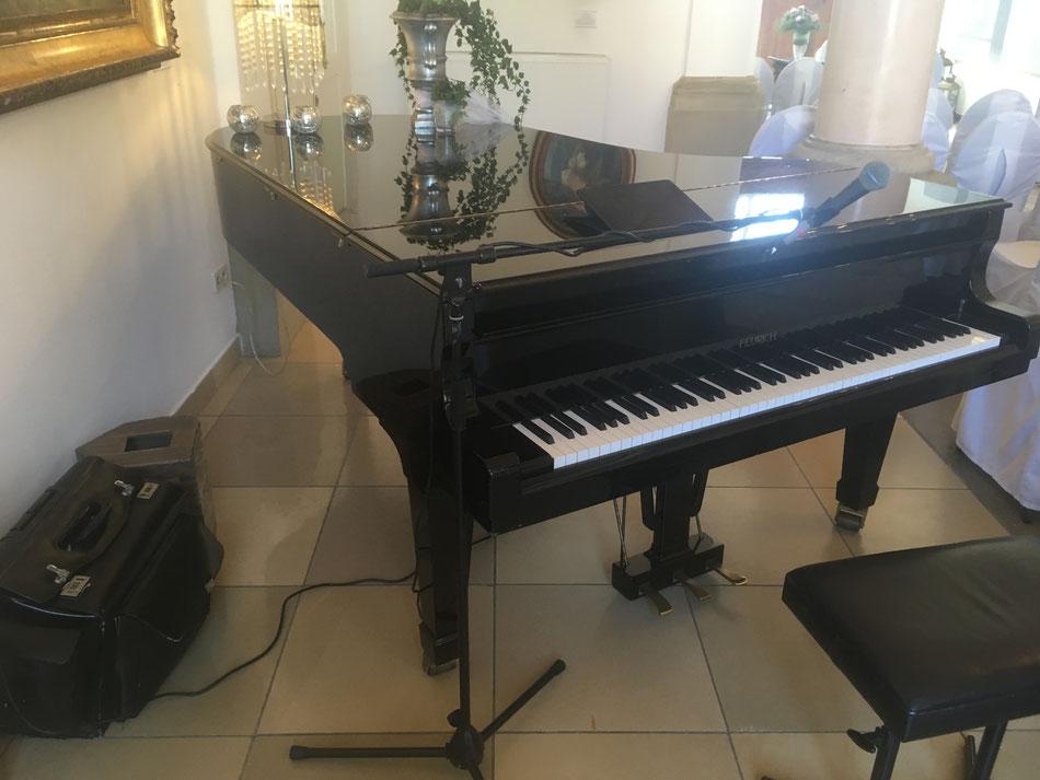 Klavierspieler, Hochzeitspianist spielt auf Flügel in Freudentaler Schloss