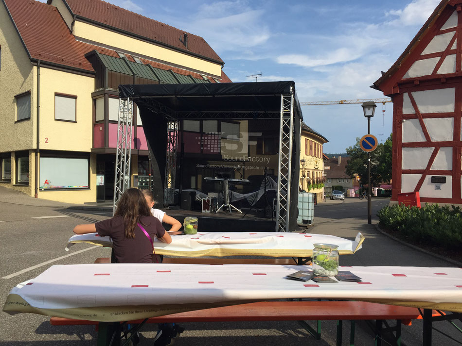 Stadtfest Schwaigern als Solomusiker
