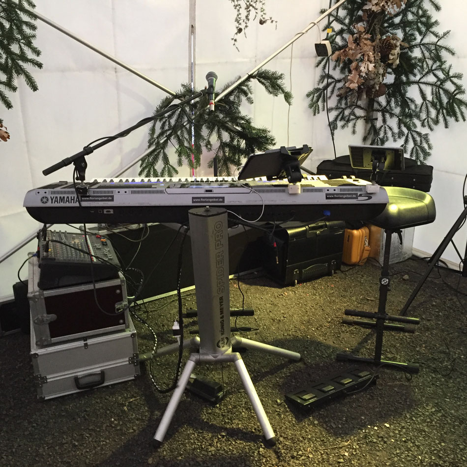 Musiker für Weihnachtsfeiern in Stuttgart