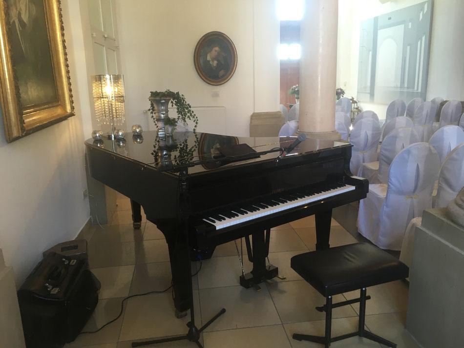 Pianist und Sänger für Hochzeiten