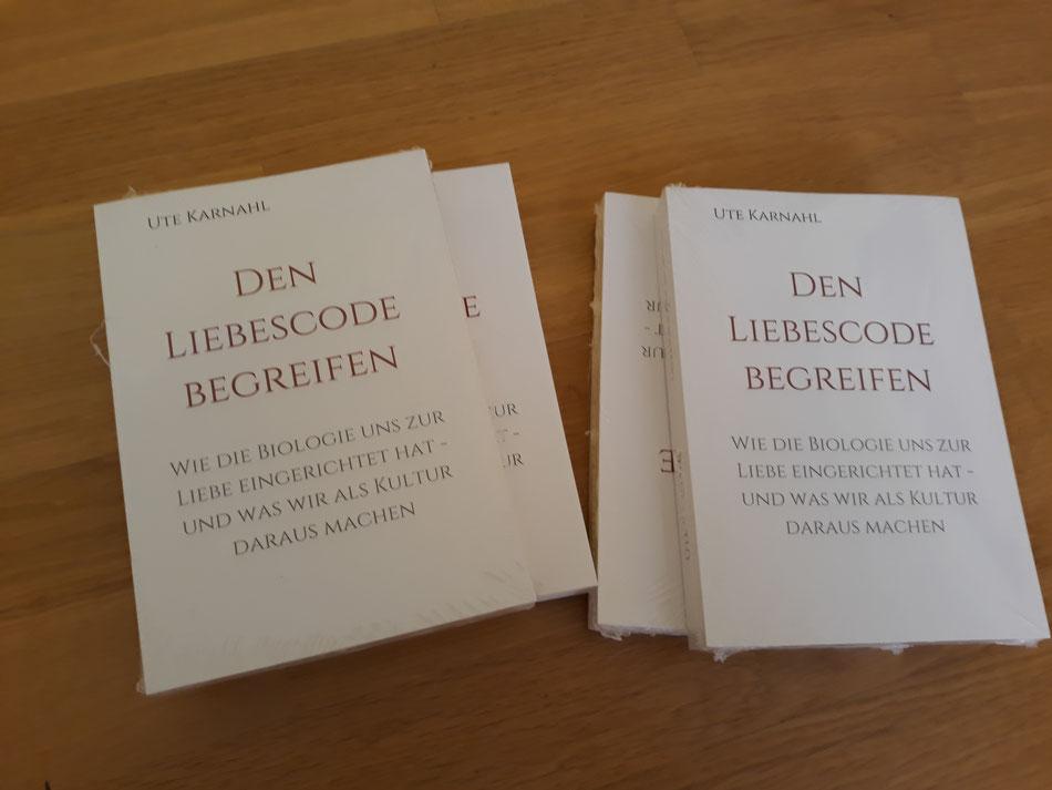 Leseprobe aus Den Liebescode begreifen Ute Karnahl, Neurobiologie der Liebe, über Versöhnung