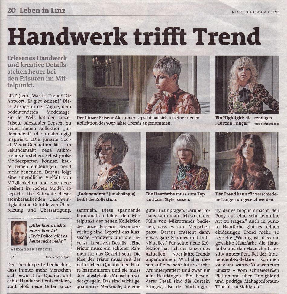 Bericht der Linzer Rundschau (Jänner 2018)