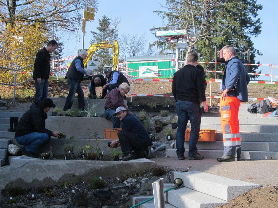 """Kiwansifreunde legen Hand an beim Bepflanzen des """"Bachtelgartens"""""""