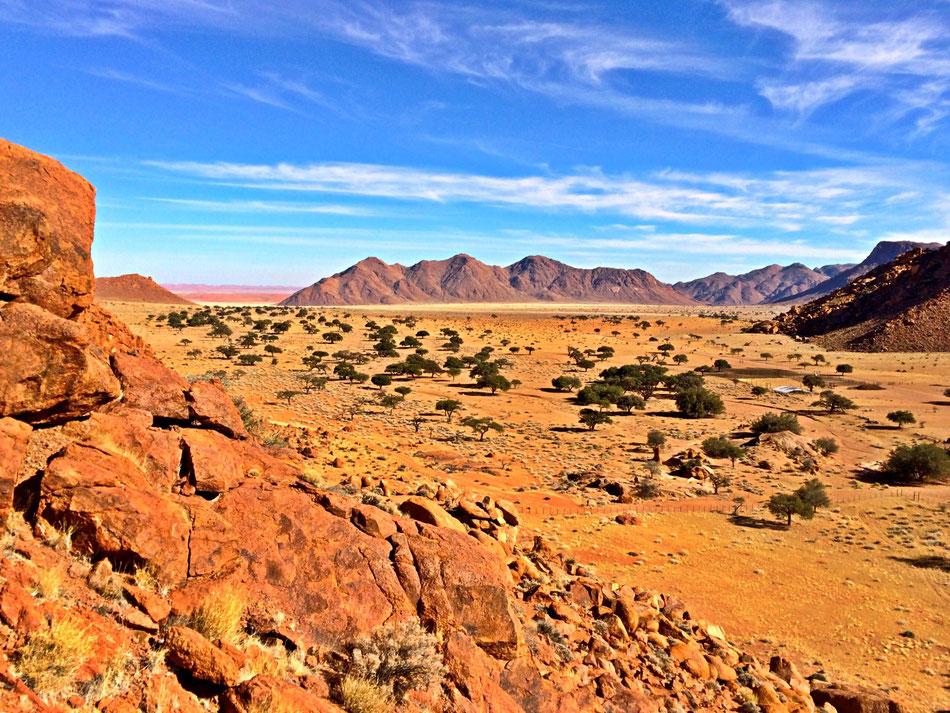 Namtib Desert Lodge Namibia. Nicht nur Tripadvisor gibt Höchstnoten für diese tolle Lodge und den netten Eigentümern.