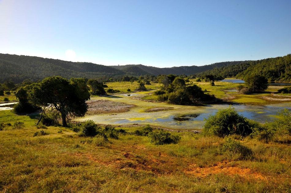 landschaft im sibuya game reserve an der garden route, nahe kenton-on-sea, eastern cape. http://www.sibuya.co.za/