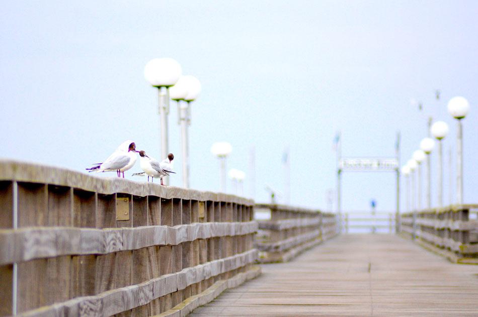 Seebad Binz Anleger an der Strandpromenade