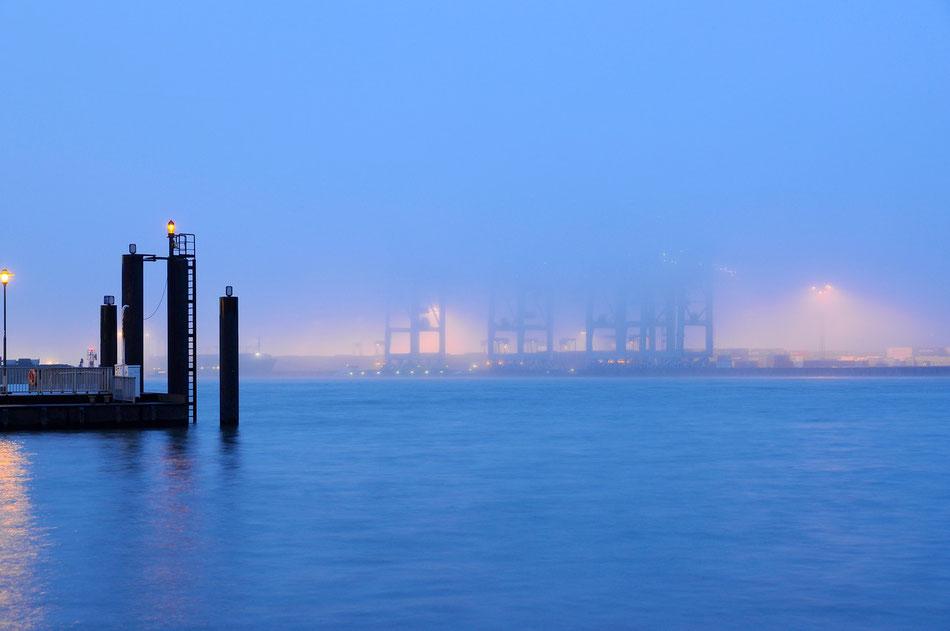 Fischmarkt Hamburg im Nebel mit Blick auf den Containerhafen.