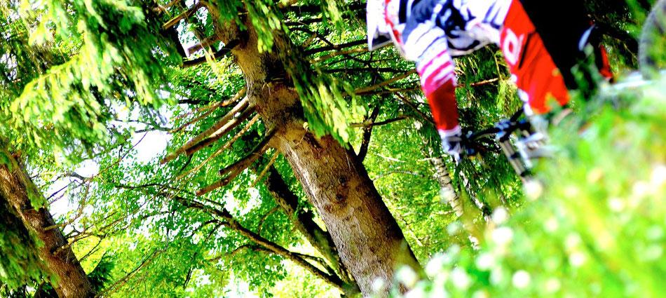 Rock´n Roll downhill on Evils Eye im Bayerischen Wald.