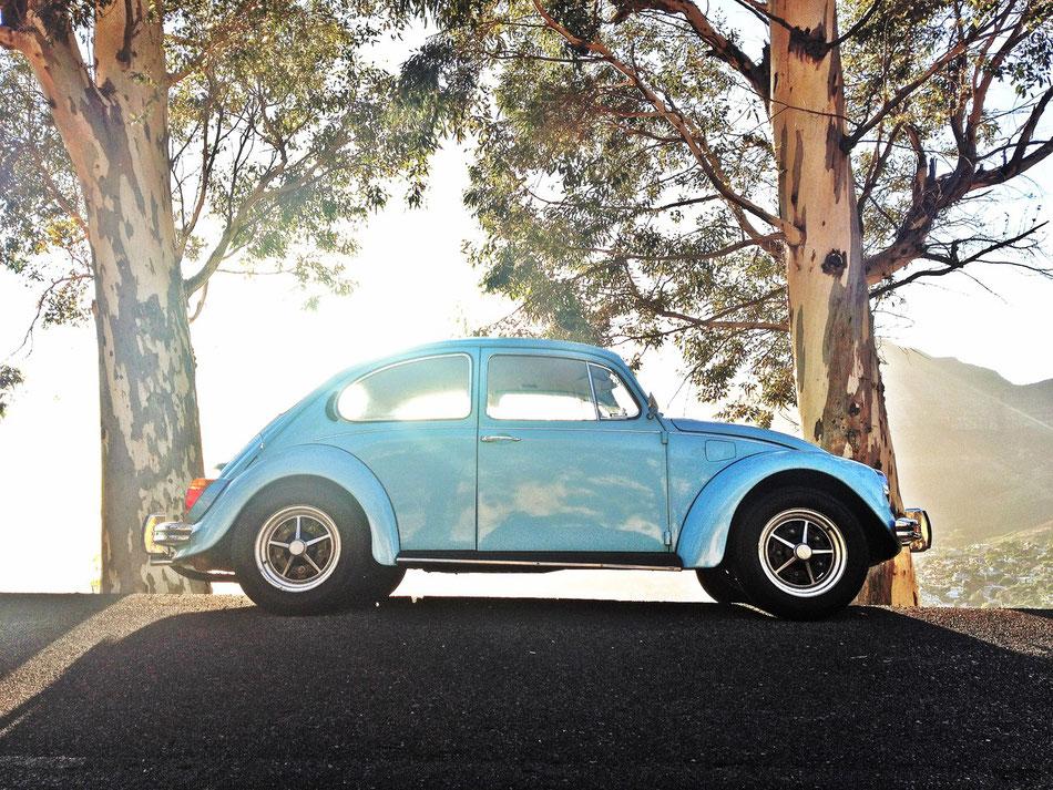 VW Beatle 1303 am Signal Hill vor dem Tafelberg und Kapstadt