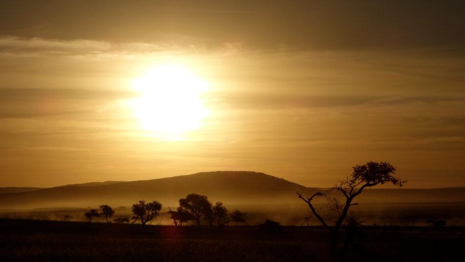 Abendssonne kurz vor den Toren zum Sossusvlei in der Wüste Namibias.