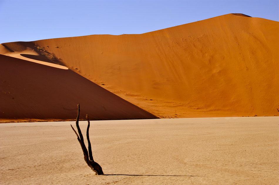 Big Daddy Dune im Sossusvlei, Namibia, Safari, Wüste