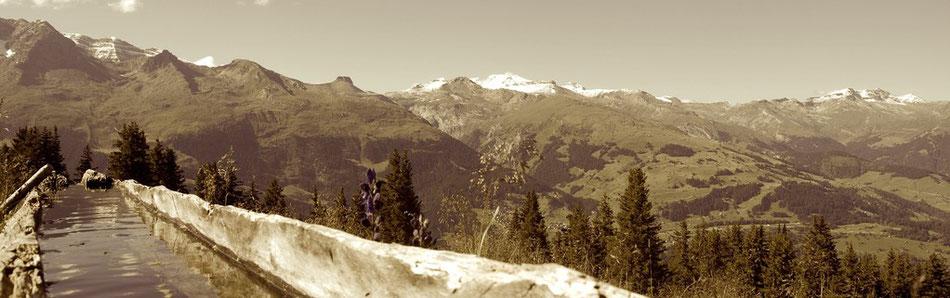Schweiz Berge Wassertränke Schnee Berggipfel