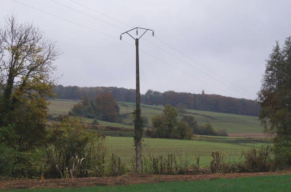 """En novembre 2016, une campagne d'élagage """"à blanc"""" a été lancée par Enedis sur le secteur de La Chapelle-Monthodon, commune de Vallées-en-Champagne."""