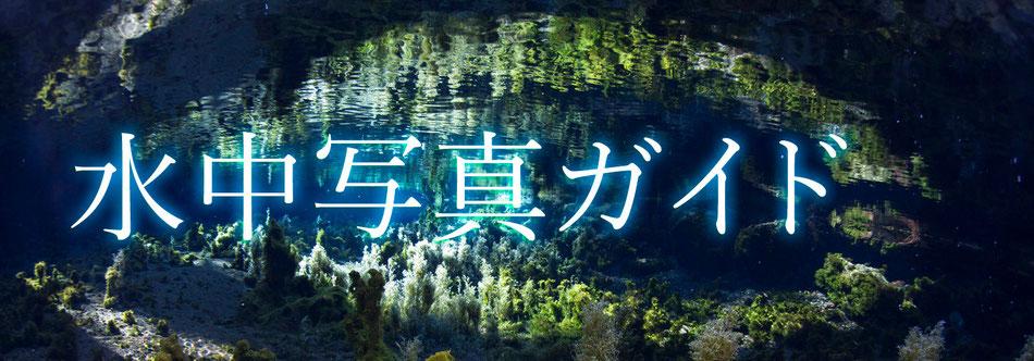 水中写真ガイドのホームページ写真