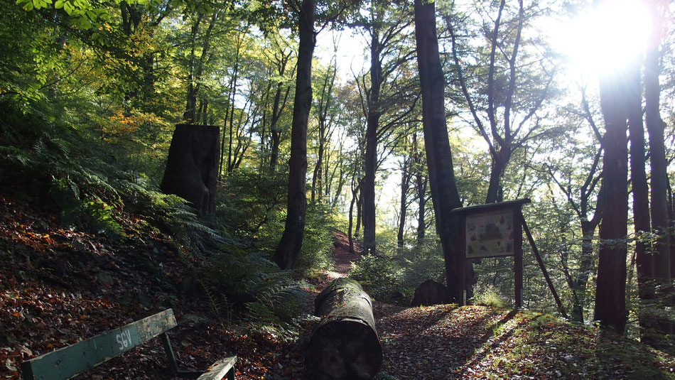 Geschichts- und Naturlehrpfad Altena