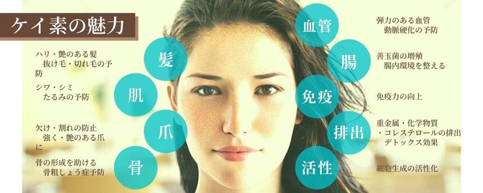 ケイ素は肌や髪、爪、骨だけでなく免疫力を支えています