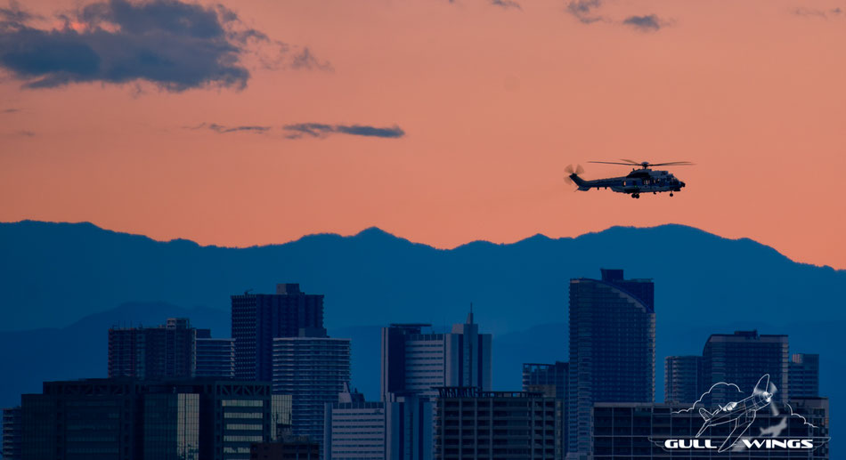A Coast Guard Super Puma is landing after a mission with a beautiful suburban sunset backdrop. (Haneda, Tokyo 09-12-2018)
