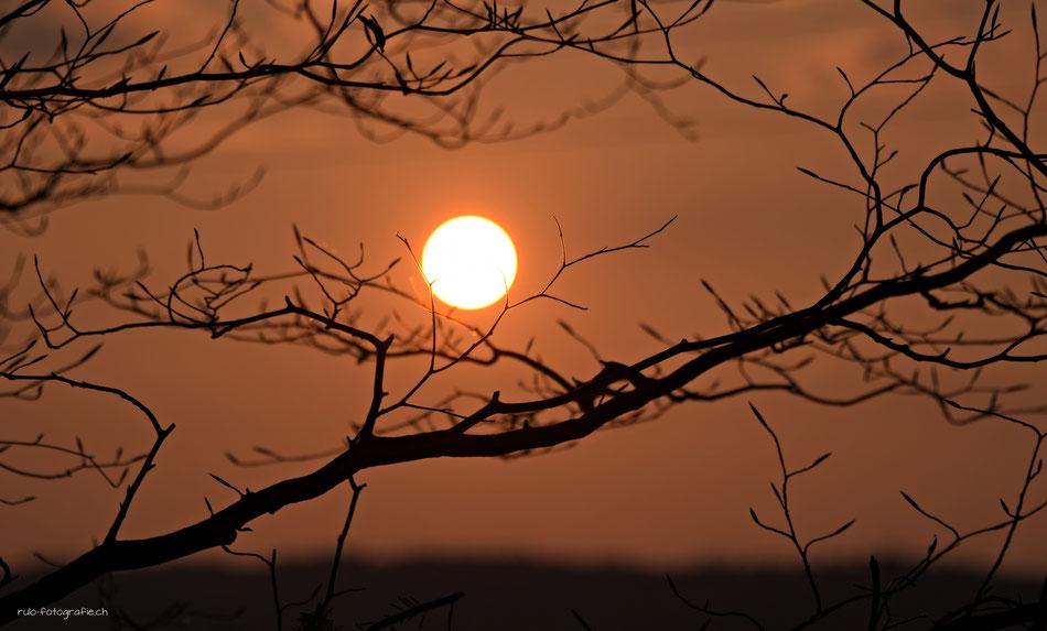 Sonnenuntergang, Leutsche Kirchlindch