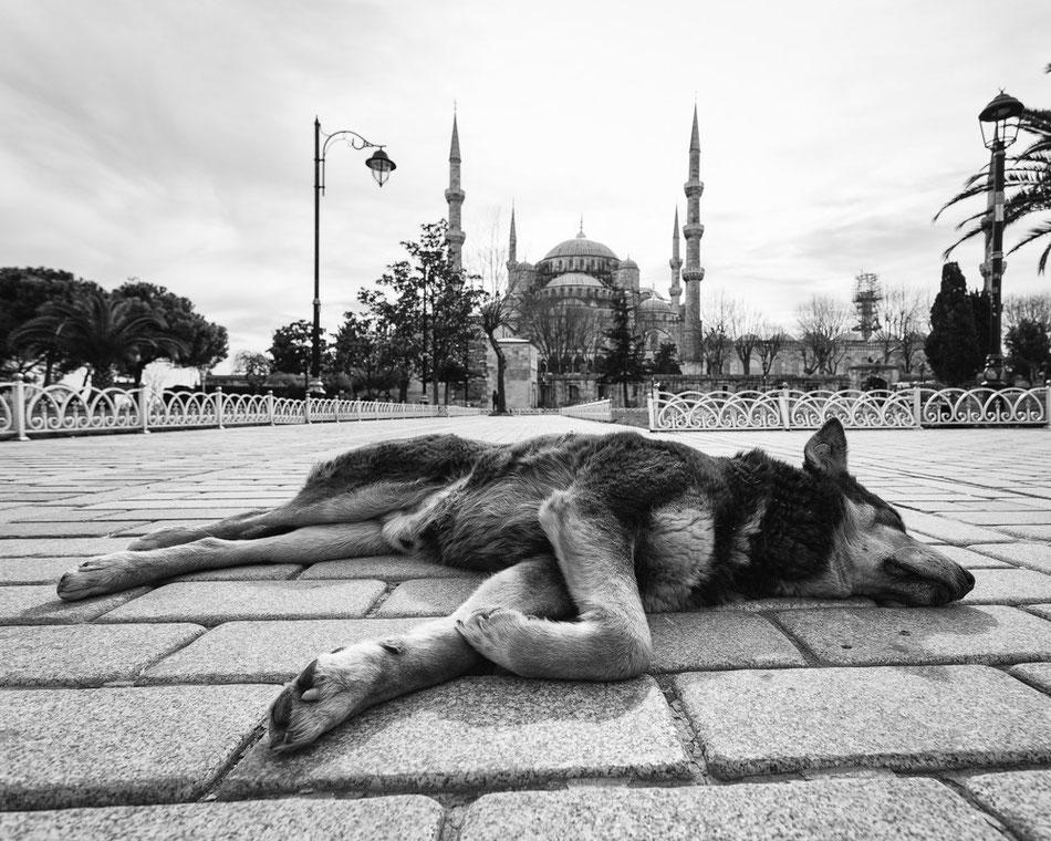 Istanbul - Danke (Copyright Martin Schmidt, Fotograf für Schwarz-Weiß Fine-Art Architektur- und Landschaftsfotografie aus Nürnberg)