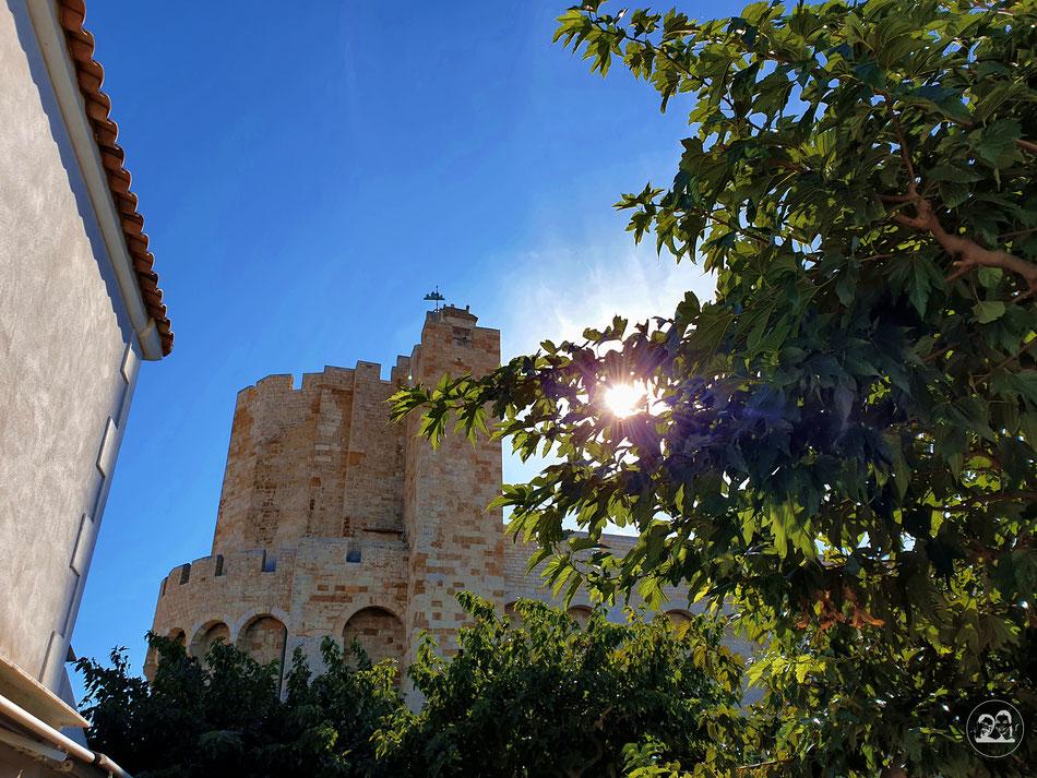 mit dem Wohnmobil in die Provence leni und Toni fahren in die Camargue Saintes Maries de la Mer Nationalpark Camargue