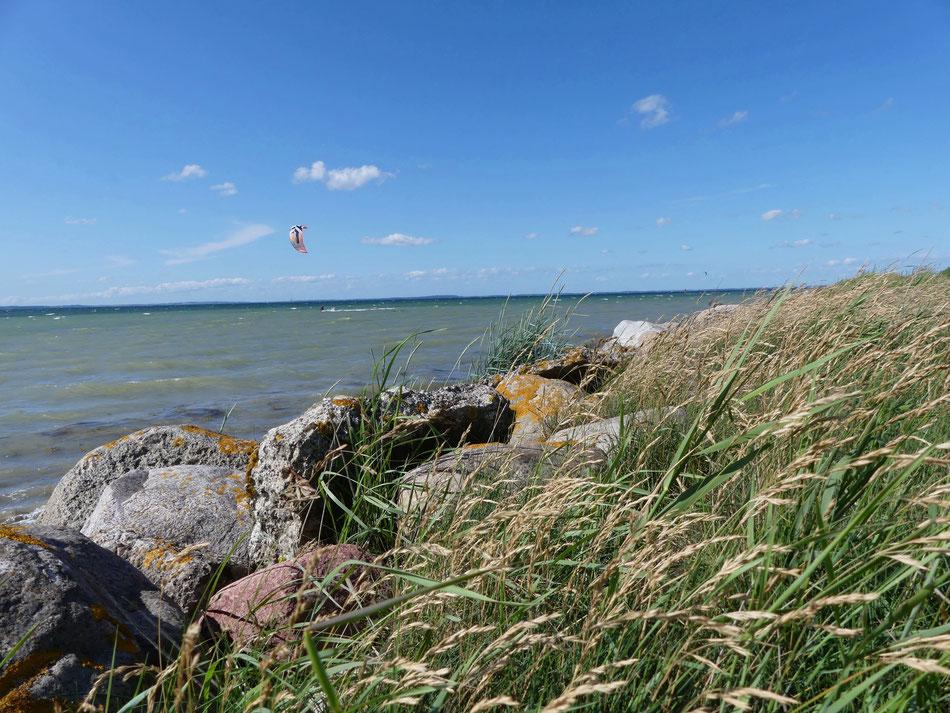 Leni und Toni unterwegs mit dem Wohnmobil an Deutschlands Ostseeküste ein Reisebericht aus dem Coronasommer 2020