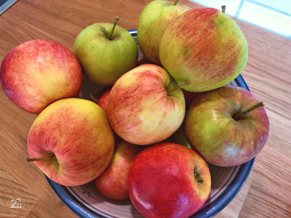 Äpfel für Apfelkuchen ungeschälte Äpfel in Schüssel für Apfelkuchen