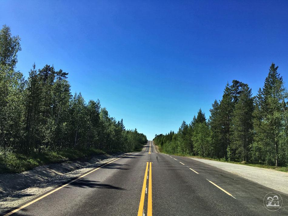 mit dem Wohnmobil nach Norwegen, vollkommen leere Straße mitten im Wald in Finnland
