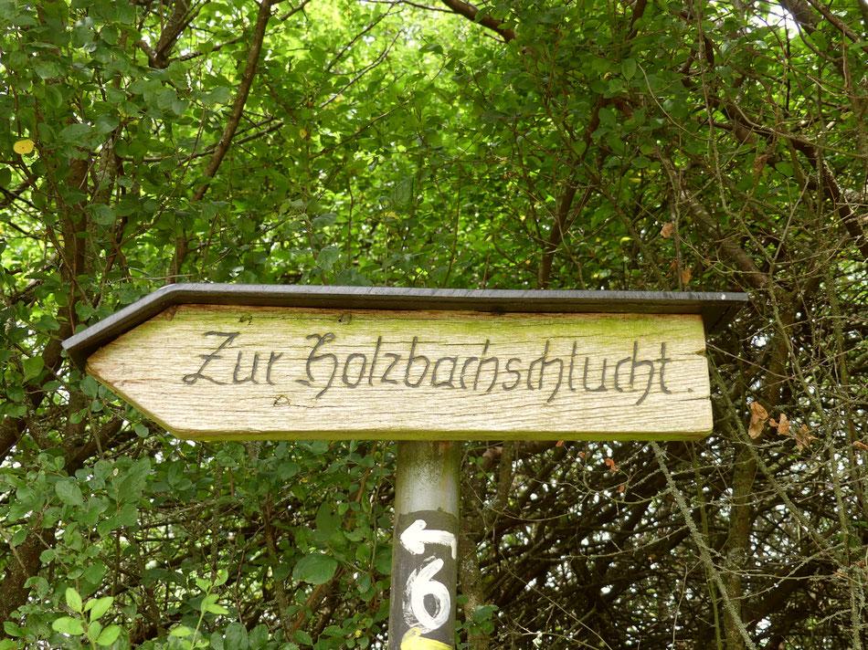 mit Leni und Toni wandern in der Holzbachschlucht