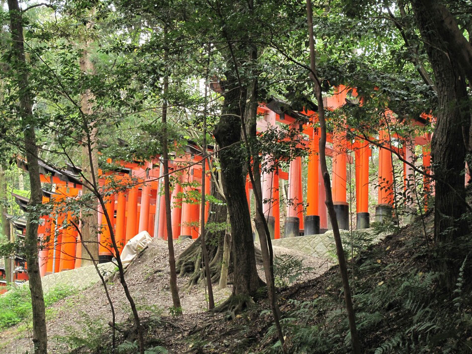 ◆日本有数の観光神社も地元の人にとっては普段の生活路。物の価値は人の立場によって大きく変わるように感じます。