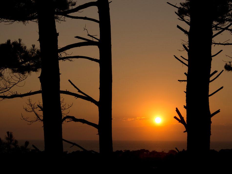 Sunset, Hossegor III  2013