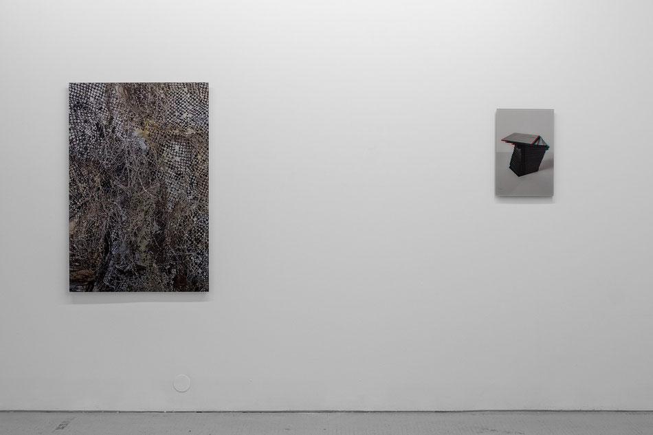 Mateusz Sadowski, Reflex Wander, Galeria Stereo