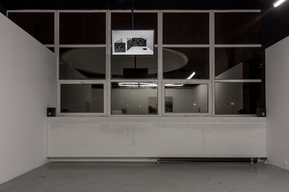 Mateusz Sadowski, Reflex Wander at Galeria Stereo