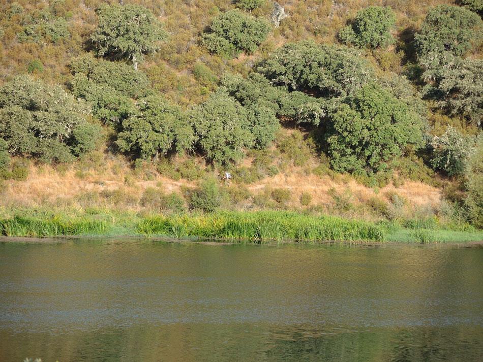 ...und dann  am Ufer von Rio Tera entlang
