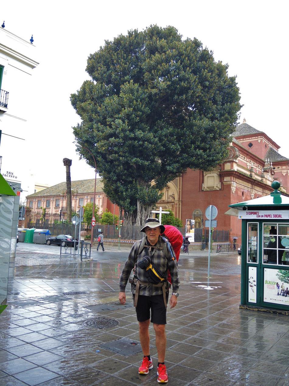 Starttag. Es ist untypisch für Sevilla kalt und regnerisch