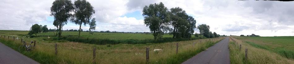 Dramatische Landschaften, friedliche Schafe.