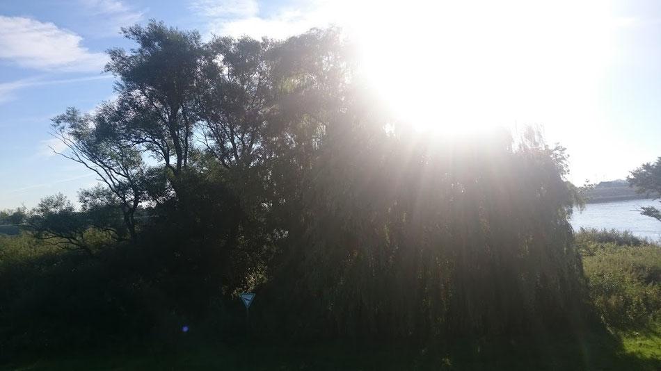 Bunthäuser Spitze: Die Sonne knallt