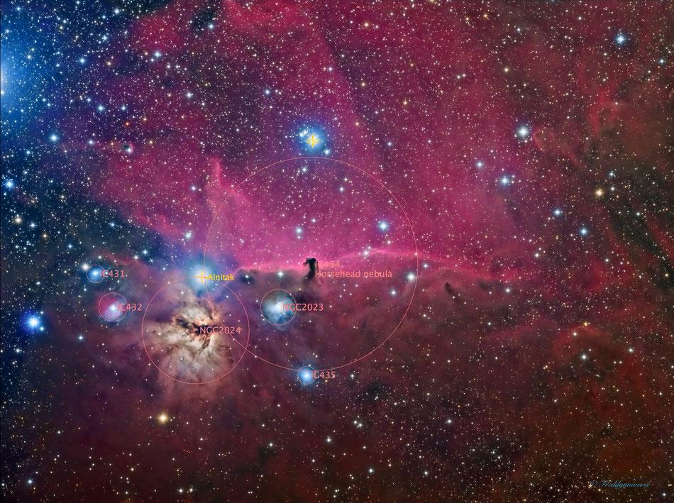 El campo de la cabeza del caballo con las principales nebulosas anotadas