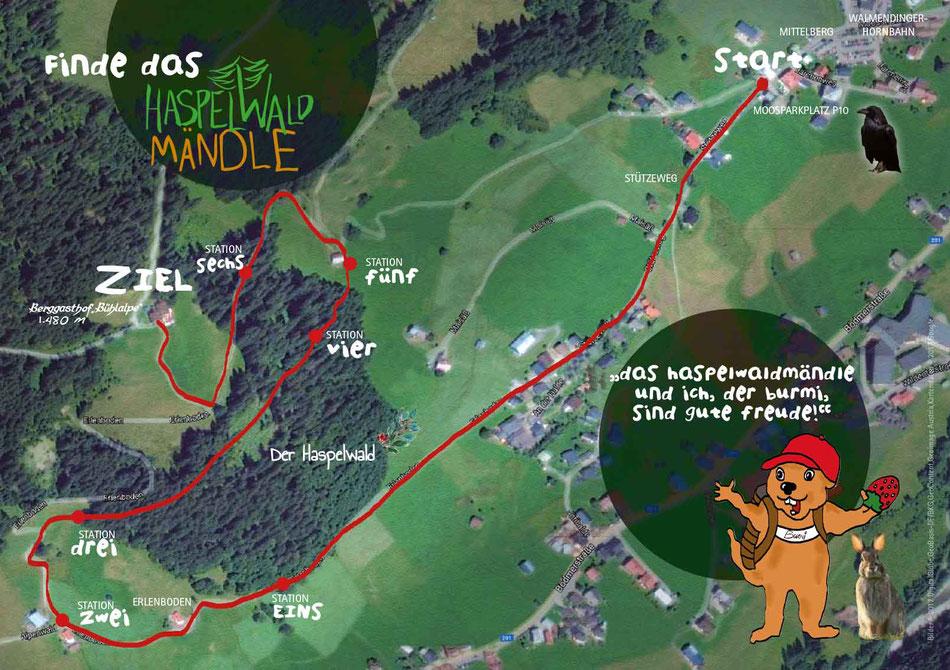 Finde das Haspelwaldmändle im Kleinwalsertal
